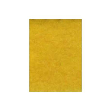 Motion Amarillo 1